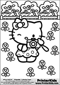Printable colouring sheet with Hello Kitty. Hello Kitty is standing surrounded by flowers with a camera in her hands, with one eye closed ready to take a picture. Hello Kitty is wearing a dotted dress.